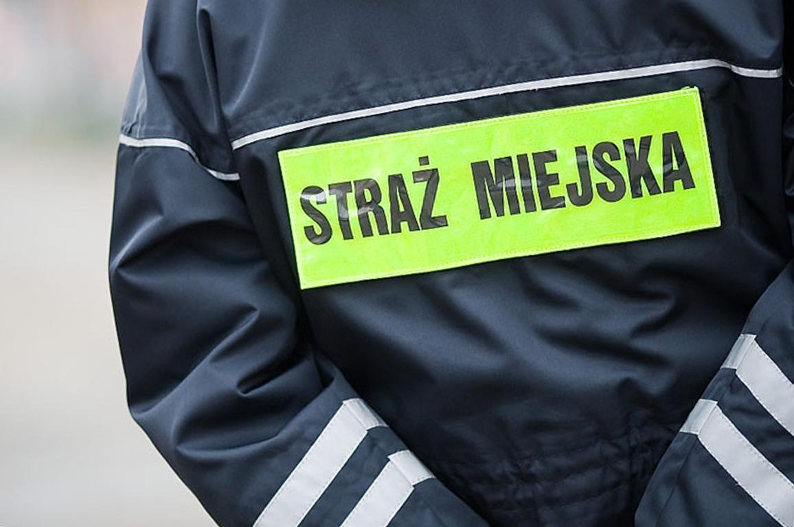 zdjęcie przedstawia strażnika miejskiego
